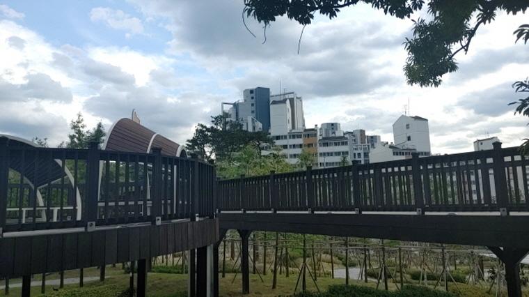 '기억애(愛) 공원' 산책하며 치매도 예방해요!