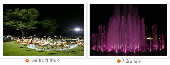서울대공원 홍학쇼(좌), 서울숲 분수(우)