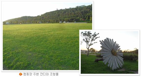 캠핑장 주변 잔디와 조형물