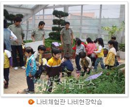 나비체험관 나비현장학습