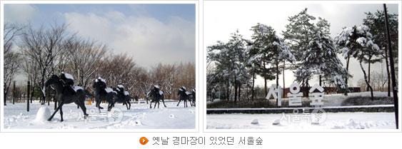 옛날 경마장이 있었던 서울숲