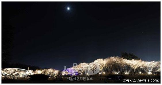 밤하늘(사진:뉴시스)