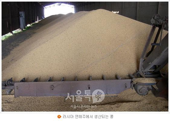러시아 연해주에서 생산되는 콩