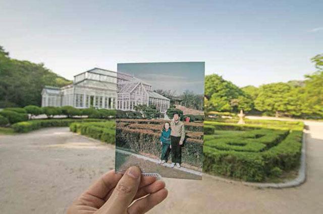 <공원사진관: 기념의 기념> 와룡동 창경궁 대온실, 1987-2014년 (ZAKO,한상우)