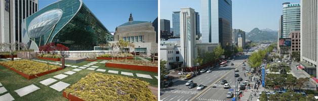 서울도서관 옥상정원 `하늘뜰`과 옥상에서 내려다 본 광화문일대