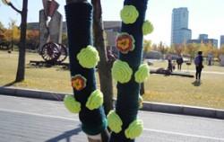 해충방지용 털실옷이 올림픽 공원 가로수를 감싸고 있다