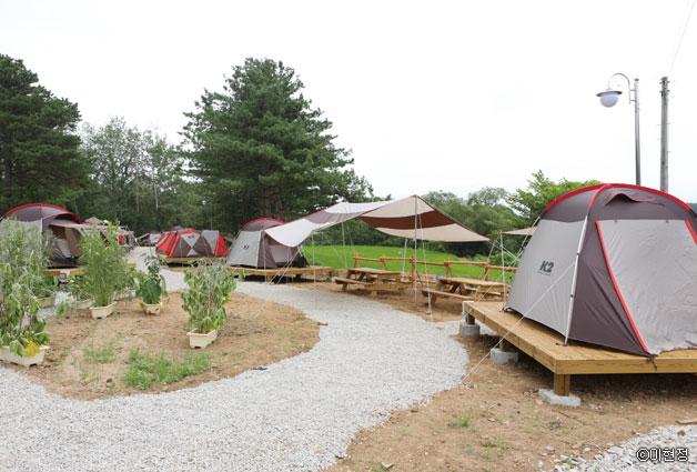 포천 자연마을 캠핑장 ⓒ이현정