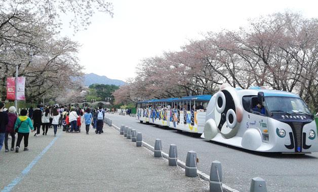대공원 축제장을 찾은 시민들과 전기코끼리열차