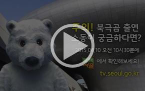[영상] 도심 한복판 북극곰.. 누구냐 넌?
