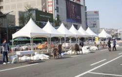 지난 10일, `차 없는 거리`를 운영한 동대문디자인플라자 구간 앞