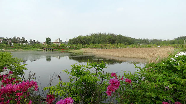 5월엔 항동 푸른수목원 야외나들이를 추천한다