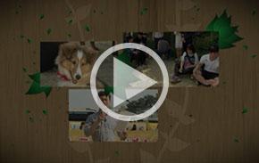 [영상] 강아지를 혼란스럽게 하는 사람의 행동