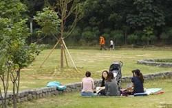 공원 풀밭