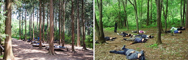 명상의 숲, 단전호흡