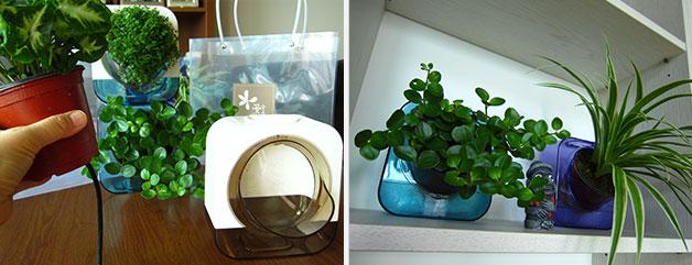 나눔포트는 비스듬하게 식물을 담아놓을 수 있도록 만든 플라스틱 용기다