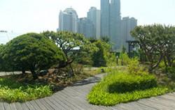 생태학습공간으로 변신한 동부공원녹지사업소 옥상