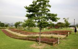 뚝섬한강공원
