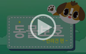 [영상] 잃어버린 강아지 쉽게 찾는 법