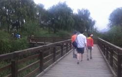 공원 내 습지 위로 설치된 목데크 탐방로를 걷고 있는 시민들