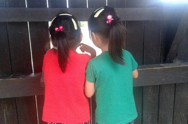 철새조망대에서 전경을 관찰하고 있는 어린 자매