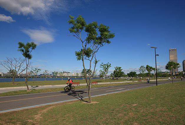여의도 한강공원 자전거 도로