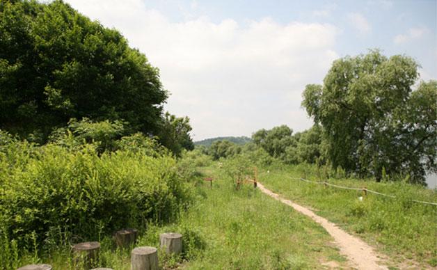 고덕수변생태공원