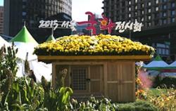 11월 15일까지 열리는 서울광장에서 열리고 있는 2015 서울국화전시회