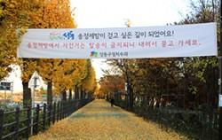 송정제방길이 보행자 중심의 `걷고 싶은 길`로 새롭게 조성됐다
