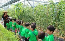 농작물 관찰