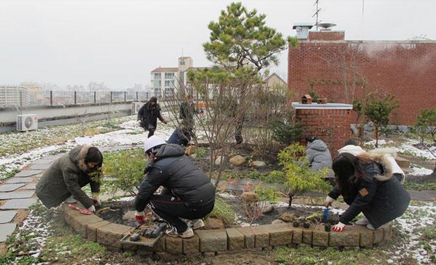 강동구 둔촌고 학생들이 학교 옥상에 생태공간을 조성하고 있다