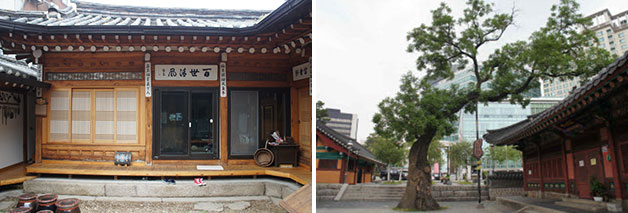 김태길가옥(좌), 우정총국 회화나무(우)