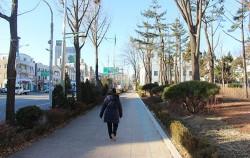 서울혁신파크의 담장 개방 후, 시민이 거리를 걷고 있다