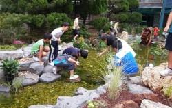 마포구 성원초등학교 내의 생태연못에서 아이들이 수생식물을 관찰하고 있다