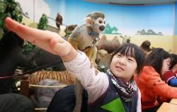 동물학습 프로그램