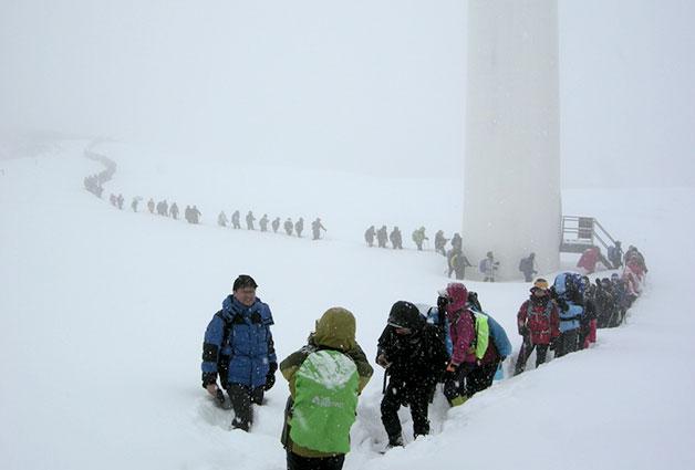 겨울철 눈꽃산행을 즐기는 산악회원 모습(강서사랑산악회)