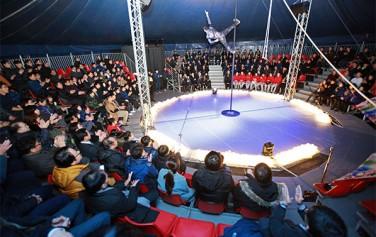 어린이대공원 내 서커스공연 `날다`