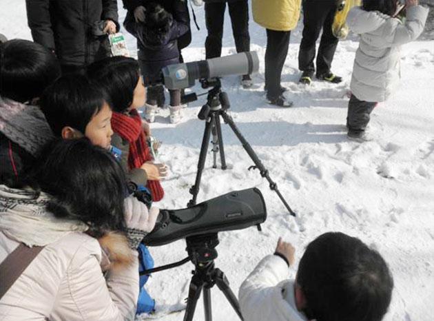 남산의 새-가족탐사에서 야생조류를 관찰하는 아이들