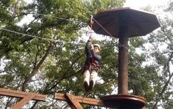 청소년 체험의 숲 코스 중 `플라잉 팍스`
