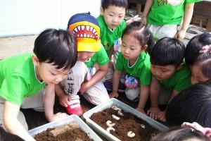 신나는 여름, 어린이자연학교 무료 운영