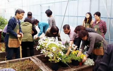 실내식물 유지관리 교육현장