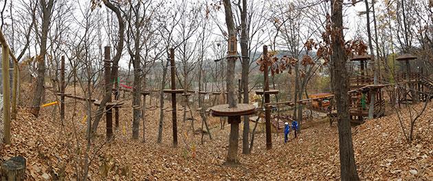 청소년 체험의 숲 전경