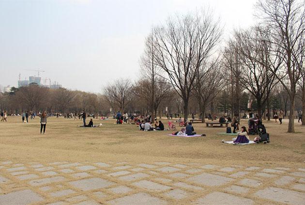 주말에 서울숲을 찾은 시민들