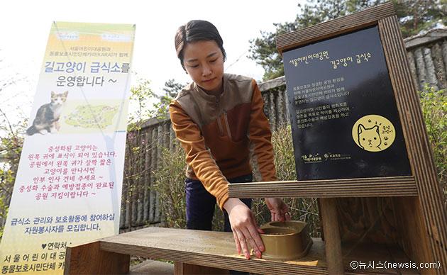 서울어린이대공원에 설치된 길고양이 급식소 ⓒ뉴시스