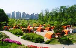 강동그린웨이 캠핑장 전경