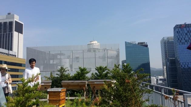 도시농업1
