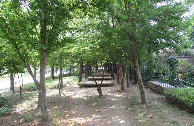 성동 서울숲 캠핑장 전경