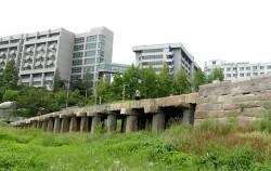 한양대학교를 등지고 아련히 서 있는 이 석조 다리의 이름은 `살곶이다리`다