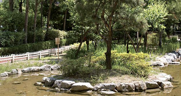 길게 이어진 숲길에 생태 연못, 지압 바닥 등이 아기자기하게 들어선 발바닥공원