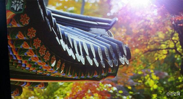 `궁을 걷다, 숨을 쉬다展`, 가을 단풍과 어우러진 기와의 단청이 아름답다. ⓒ강민혜