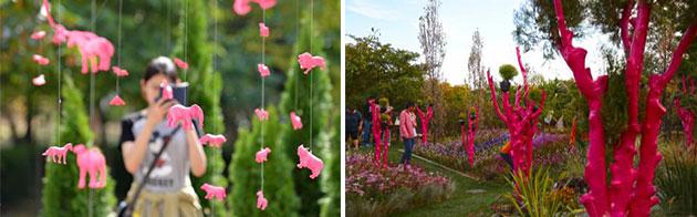 2015년 정원박람회 모습